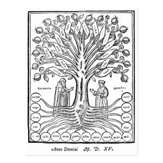 Árbol medieval de ciencias tarjetas postales