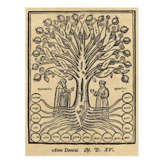Árbol medieval de las ciencias tarjetas postales