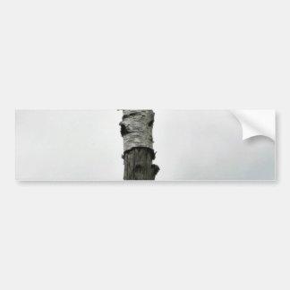 Árbol muerto etiqueta de parachoque