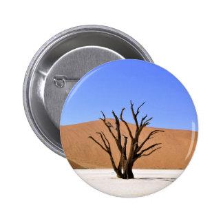 Árbol muerto en el desierto de Namib Pin