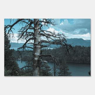 Árbol muerto en el lago Tahoe Cartel