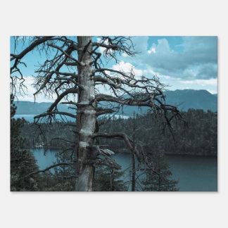 Árbol muerto en el lago Tahoe Letrero