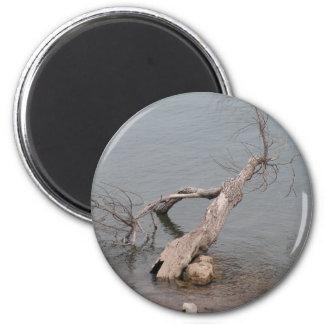 Árbol muerto en la roca de la tabla imán redondo 5 cm