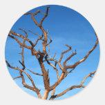 árbol muerto etiqueta redonda