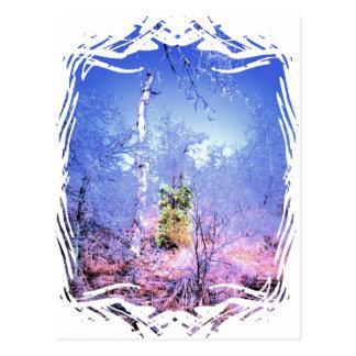 Árbol muerto helado con árbol de hoja perenne postal