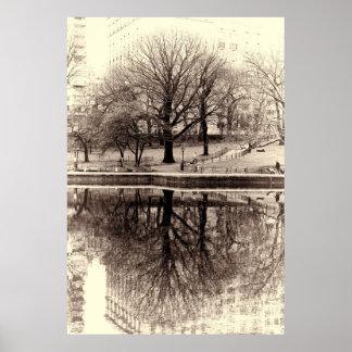 Árbol negro y blanco del invierno del paisaje - Ce Posters