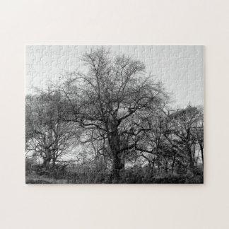 Árbol negro y blanco del invierno del paisaje en puzzles