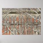 Árbol nevado 2 póster
