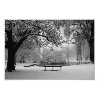 Árbol Nevado el banco de Boston mA del jardín Cojinete