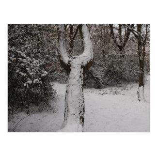 Árbol nevado en el bosque de Epping Postales