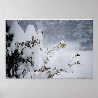 Árbol nevado posters