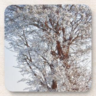 Árbol nevado posavaso