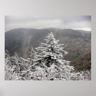 Árbol Nevado Póster