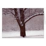 Árbol nevado - tarjeta de felicitación