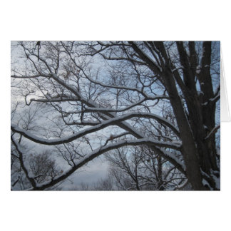 Árbol Nevado Tarjeta De Felicitación