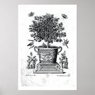 Árbol ornamental en una urna en una pequeña etapa  posters