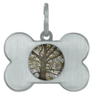 Árbol Placa Mascota