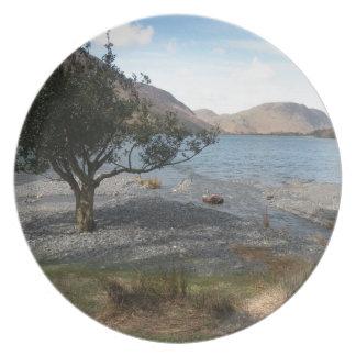 Árbol por la orilla platos para fiestas