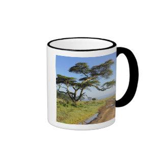 Árbol primitivo del camino de tierra y del acacia, taza de dos colores