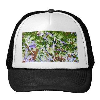 árbol púrpura de la flor contra el extracto del ci gorros