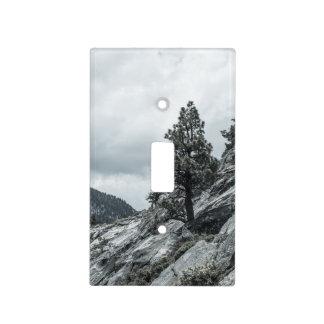 Árbol que crece fuera de las rocas cubiertas para interruptor