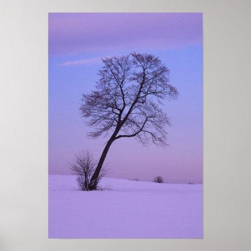 Árbol que se inclina en el campo Nevado; El condad Posters