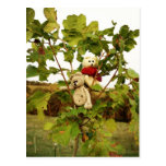 Árbol que sube de Frank&Lennart Tarjetas Postales