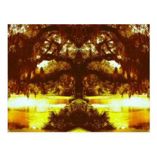 Árbol reflejado postales