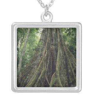 Árbol reforzado en la selva tropical, Corcovado Colgantes Personalizados