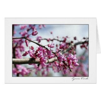 Árbol rosado de la flor tarjeta de felicitación