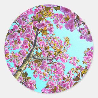 árbol rosado de la primavera con las flores etiqueta