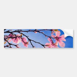 árbol rosado hermoso de la primavera pegatina para auto