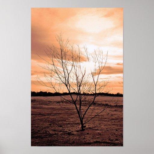 árbol seco posters