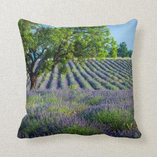 Árbol solitario en el campo púrpura de la lavanda cojines
