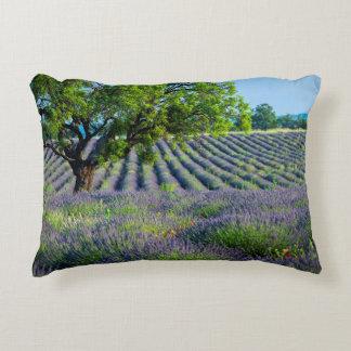 Árbol solitario en el campo púrpura de la lavanda cojín decorativo