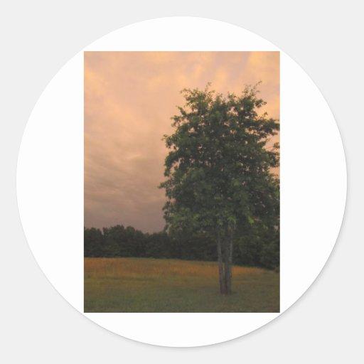 Árbol solitario etiquetas redondas