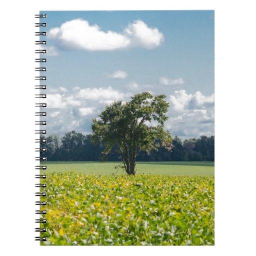 Árbol solitario libros de apuntes