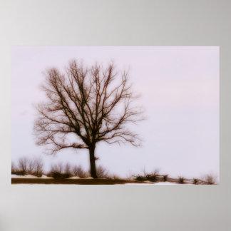 Árbol solitario póster