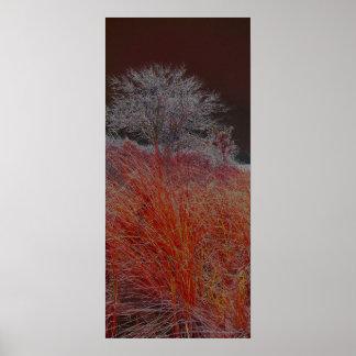 árbol solitario - rojo póster