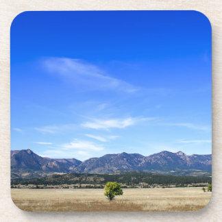 Árbol solo, Colorado Springs, Colorado Posavasos De Bebida