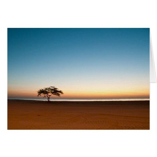 Árbol solo en la salida del sol en Kuwait Felicitación
