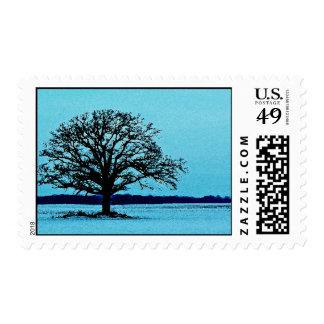 Árbol solo en un paisaje del invierno sello