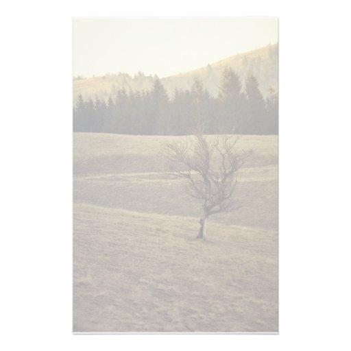 Árbol solo  papeleria
