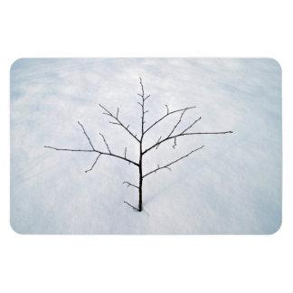 Árbol solo secado de la rama en un paisaje nevoso imanes flexibles