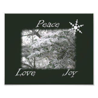 Árbol Spruce Nevado/alegría del amor de la paz Foto