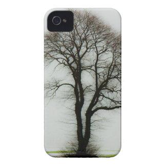 Árbol suave del invierno iPhone 4 Case-Mate protectores