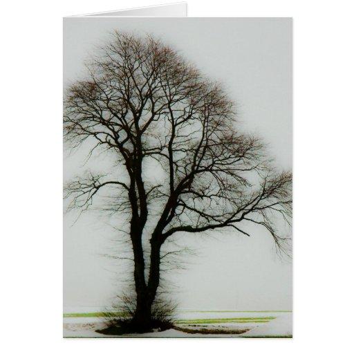 Árbol suave del invierno tarjeton