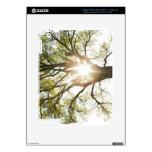 Árbol Sunlit Pegatina Skin Para iPad 3