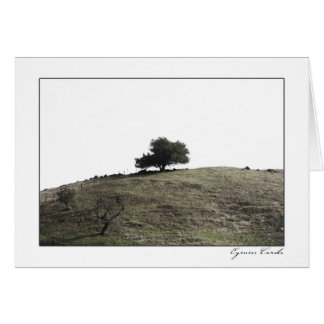 Árbol superior de la colina tarjeta de felicitación