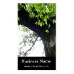 Árbol todavía l naturaleza l fotografía plantillas de tarjetas de visita